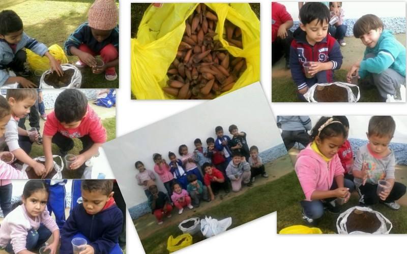 projeto ecologia - CMEI